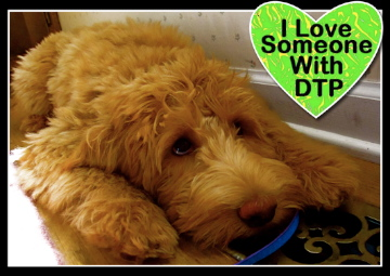 Alice Eloise service dog digestive tract paralysis